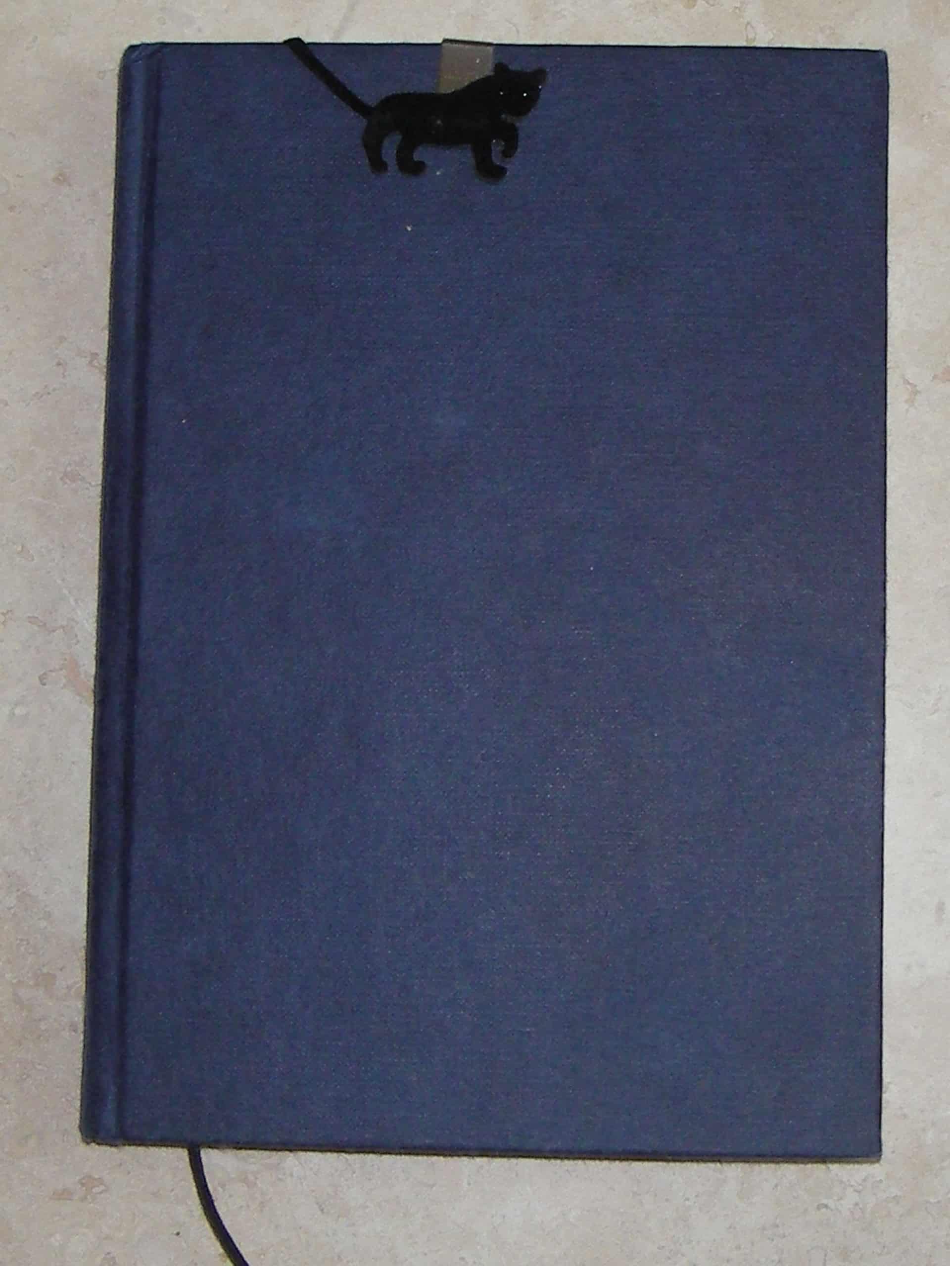 a blue hardback notebook