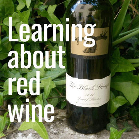 Learning about red wine